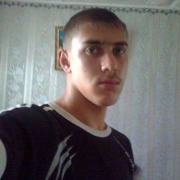 АЛЕКСАНДР, 24 года, Грязи