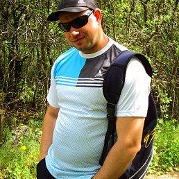 ALEX, 39 лет, Саранск - фото 5