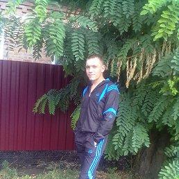 Александр, 27 лет, Семикаракорск