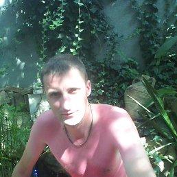 Владимир, 36 лет, Вязьма