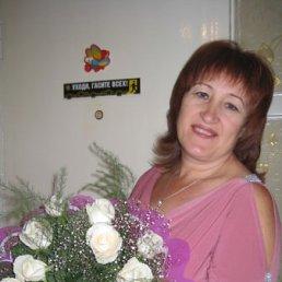 Валентина, 60 лет, Сергиев Посад