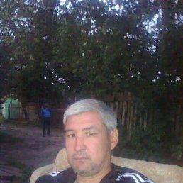 Baha, 46 лет, Михнево