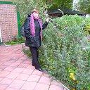 Фото Нина Герасименко, Новосибирск, 65 лет - добавлено 5 октября 2013
