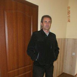 Владимир, 53 года, Городок