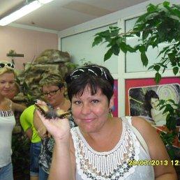 Ольга, 52 года, Шексна