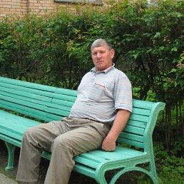 Николай, 65 лет, Романовка