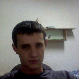 Вася, 28 лет, Диброва