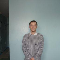 станислав, 29 лет, Зеленогорск