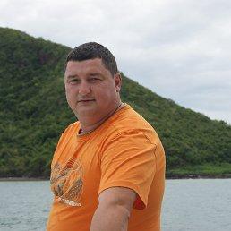 Андрей Головкин, 50 лет, Москва