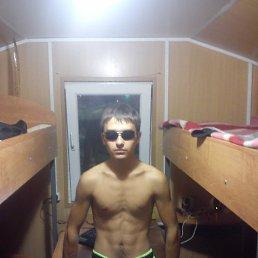 димка, 28 лет, Уруссу