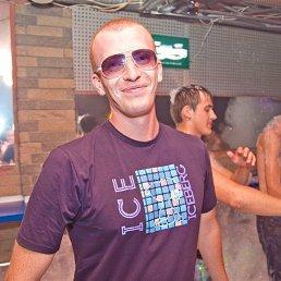 Рома, 29 лет, Васильков