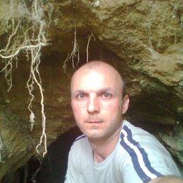 миша, 38 лет, Новопсков