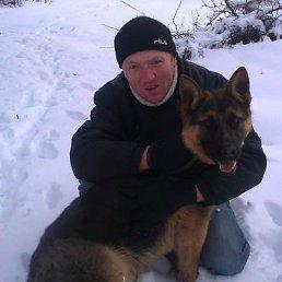 Виктор, 35 лет, Полонное