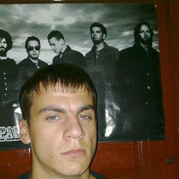 Саша, 30 лет, Конотоп