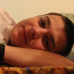 Николай, 28 лет, Всеволожск