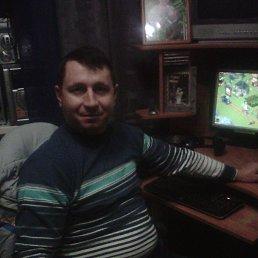 Алексей, 46 лет, Аксай