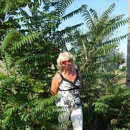 АЛЛА, 59 лет, Тосно