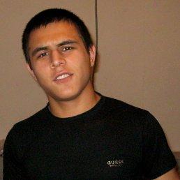 Ойбек, 28 лет, Нестерово