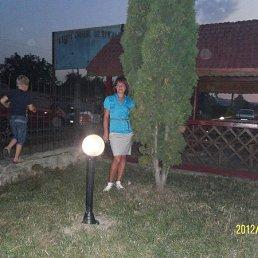 Татьяна, 44 года, Кола