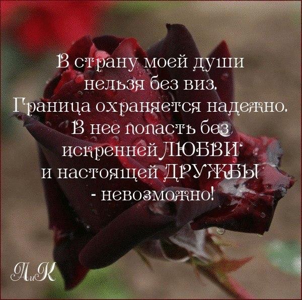 Галина(сама Не Своя,куда Там Твоя - 8 апреля 2014 в 11:30