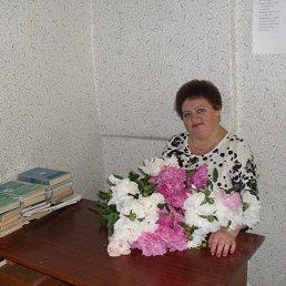Лариса, 64 года, Белгород