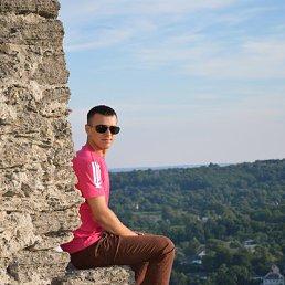 Микола, 29 лет, Кременец