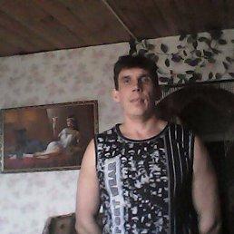Yury, 42 года, Медведево