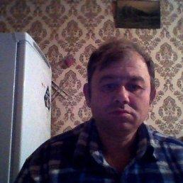 Владимир, 52 года, Брянка