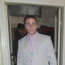 Роман, 26 лет, Суджа