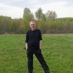Дима Елифоров, 38 лет, Красногорский