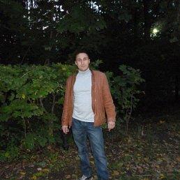 михаил, 37 лет, Вавож