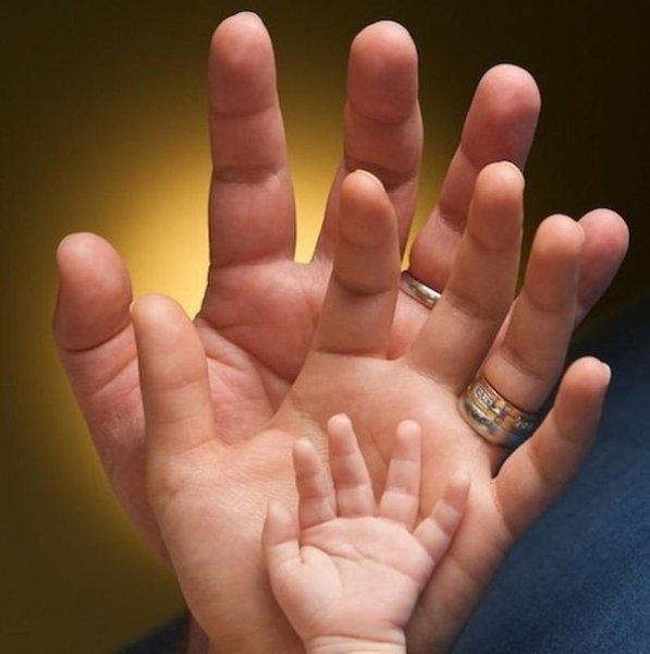 Ладошки ребенка и родителей картинки