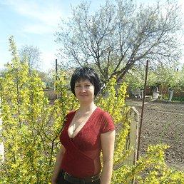Наталия, 42 года, Новомиргород