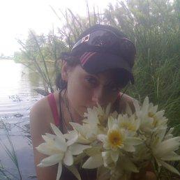 Светлана, 28 лет, Белополье