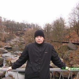 Фото Юрий, Киев, 45 лет - добавлено 15 декабря 2013
