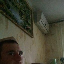 Ярослав, 27 лет, Близнюки