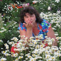 Светлана, 56 лет, Каргаполье