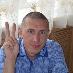 Александр, 39 лет, Гаврилов-Ям