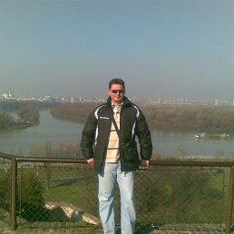Љубомир, Белград, 50 лет