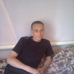саша, 35 лет, Бобринец