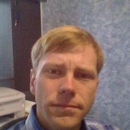 Николай, 33 года, Милославское