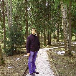 Фото Сергей, Павловский Посад, 34 года - добавлено 21 августа 2014