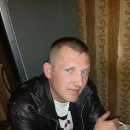 Александр, 41 год, Володарск