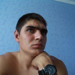 Андрей, 28 лет, Знаменск