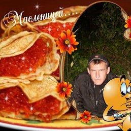 Евгений, , Вербилки