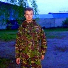 Александр, 27 лет, Боровая