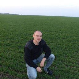 Фото Владимир, Родионово-Несветайская, 40 лет - добавлено 11 июля 2014