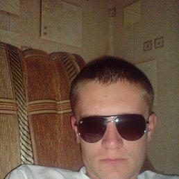Артем, 30 лет, Сватово