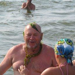 Вячеслав, 64 года, Коростышев