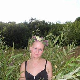 Марина, 36 лет, Лосино-Петровский